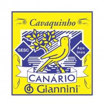 ENCORDOAMENTO PARA CAVAQUINHO ACO GESC - SERIE CANARIO - TENSAO MEDIA